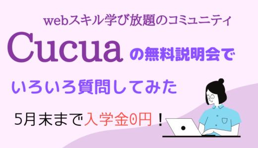 【口コミ】Cucua(ククア)の無料説明会に参加してみました!気になる授業や料金を解説!