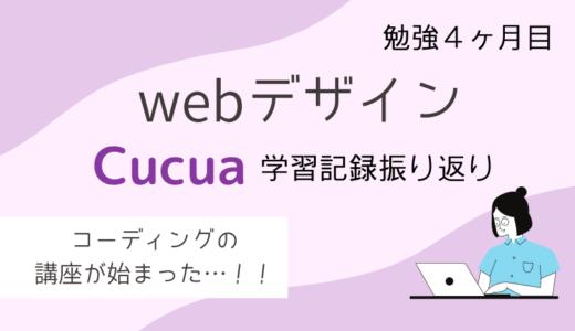 webデザインの勉強4か月目!Cucua(ククア)の学習記録振り返りまとめ!