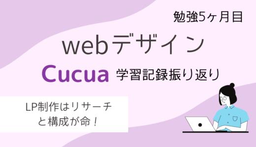 webデザインの勉強5か月目!Cucua(ククア)の学習記録振り返りまとめ!